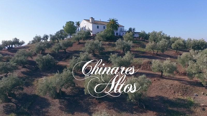 Chinares Altos